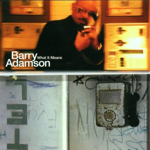 Barry Adamson What It Means