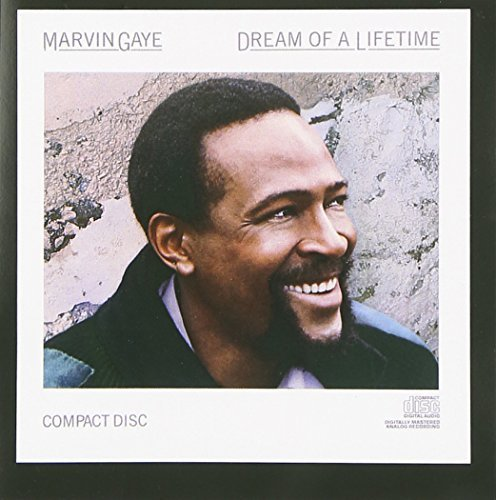 Marvin Gaye Dream Of A Lifetime