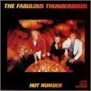 fabulous-thunderbirds-hot-number