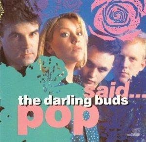 darling-buds-pop-said