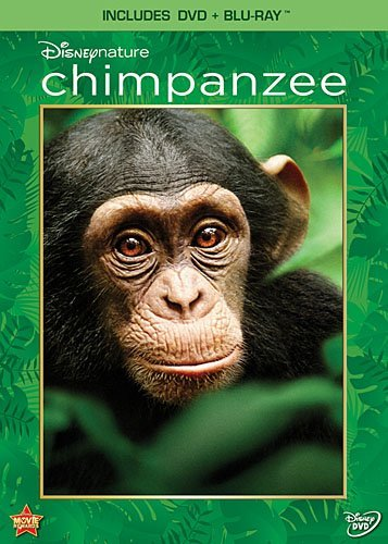 Disneynature Chimpanzee Ws Chimpanzee