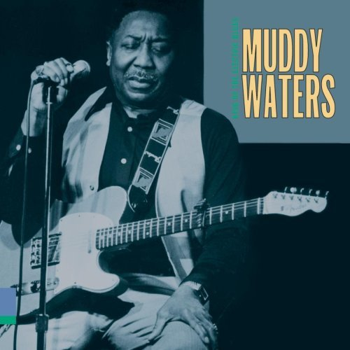 Muddy Waters King Of The Electric Blues Roots N' Blues