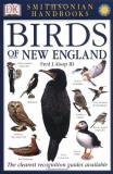Fred Alsop Smithsonian Handbooks Birds Of New England