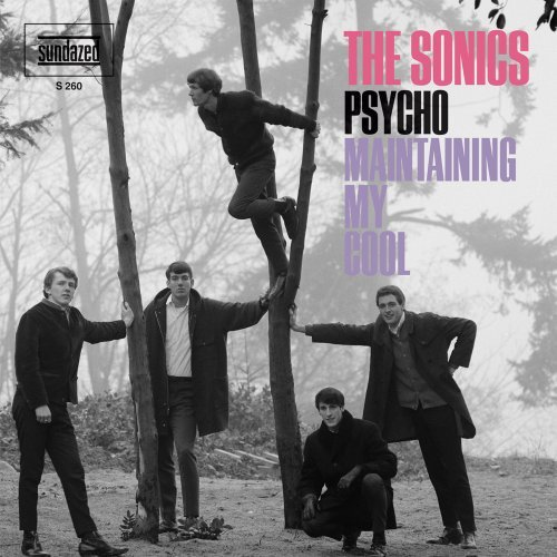 Sonics Psycho Maintaining My Soul Explicit Version 7 Inch Single