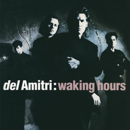 Del Amitri Waking Hours