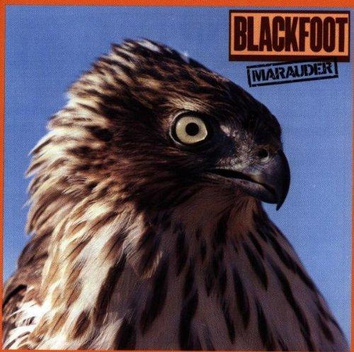 blackfoot-marauder