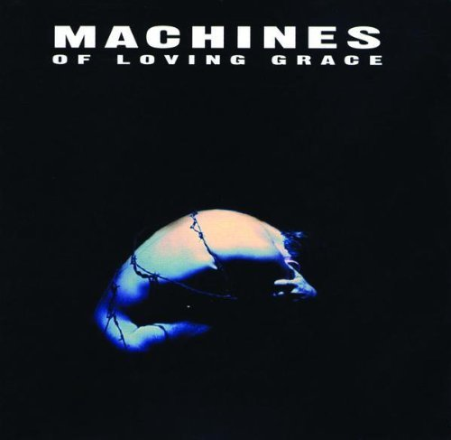 machines-of-loving-grace-concentration
