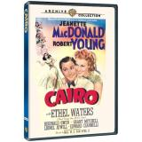 Cairo (1942) Macdonald Young Waters DVD R Nr
