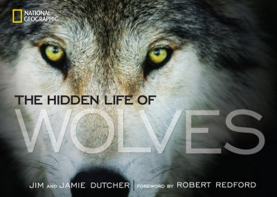 Jim Dutcher The Hidden Life Of Wolves