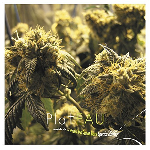 plateau-kushbush-music-for-grass-bars