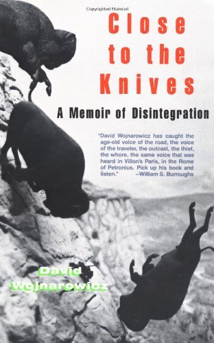 David Wojnarowicz Close To The Knives A Memoir Of Disintegration