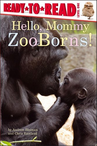 Andrew Bleiman Hello Mommy Zooborns!