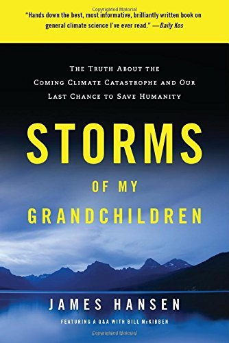 hansen-james-sato-makiko-ilt-storms-of-my-grandchildren-reprint