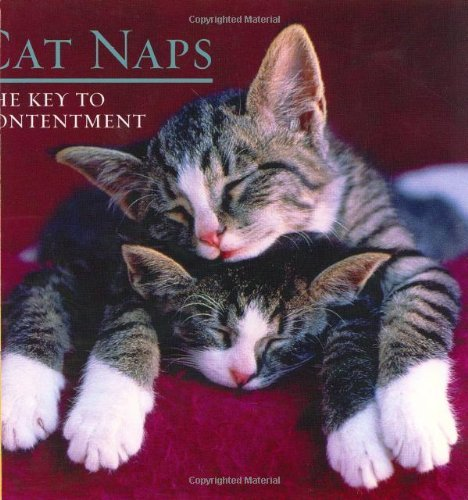 Sellers Productions Cat Naps The Key To Contentment