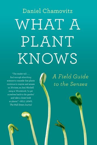 Daniel Chamovitz What A Plant Knows A Field Guide To The Senses