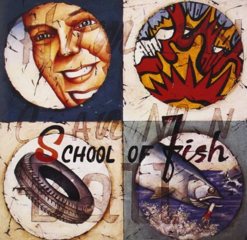 school-of-fish-human-cannonball