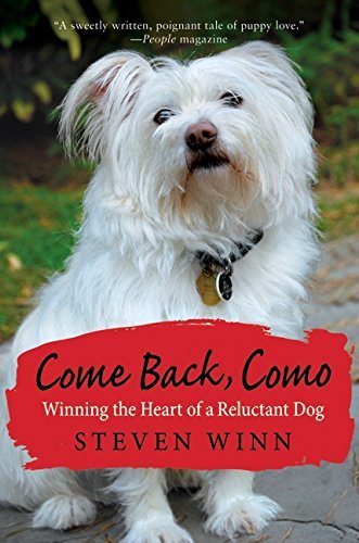 Steven Winn Come Back Como Winning The Heart Of A Reluctant Dog