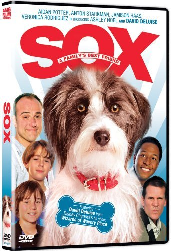 Sox A Family's Best Friend Deluise Potter Ws Nr