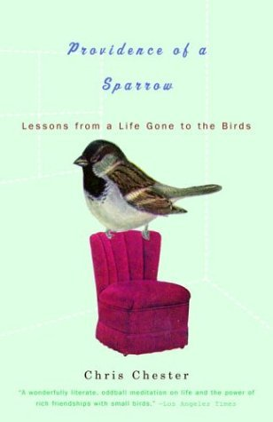 Chris Chester Providence Of A Sparrow Lessons From A Life Gone To The Birds