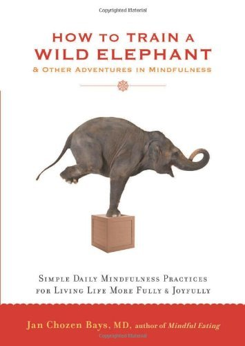 Jan Chozen Bays How To Train A Wild Elephant And Other Adventures In Mindfulness