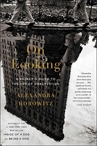 Alexandra Horowitz On Looking A Walker's Guide To The Art Of Observation