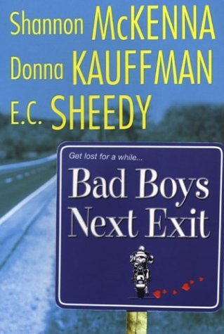 Shannon Mckenna Bad Boys Next Exit
