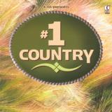 #1 Country #1 Country Gibson Young Price Fargo Helms 3 CD Set