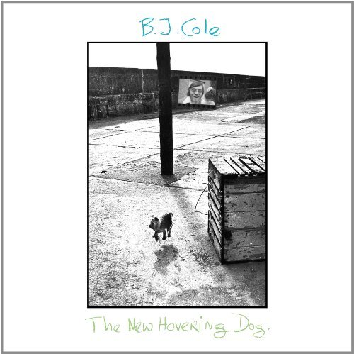 Bj Cole New Hovering Dog