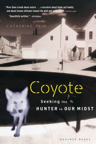 Catherine Reid Coyote Seeking The Hunter In Our Midst