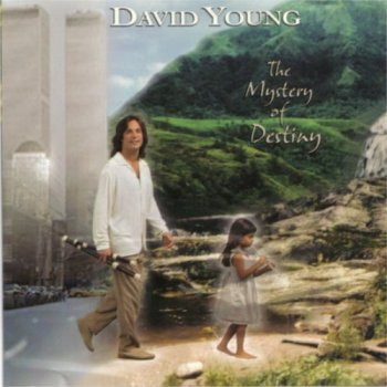 david-young-the-mystery-of-destiny