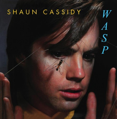 Shaun Cassidy Wasp CD R