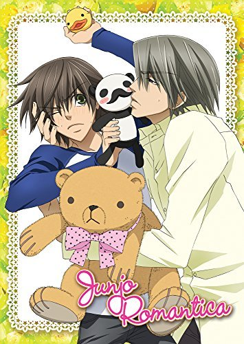 Junjo Romantica Season 1 DVD