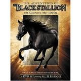 Adventures Of The Black Stallion Season 1 Nr 4 DVD