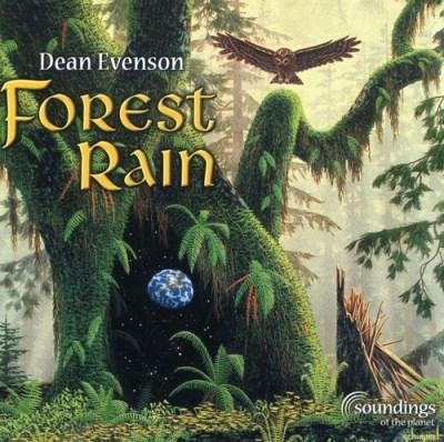 dean-evenson-forest-rain
