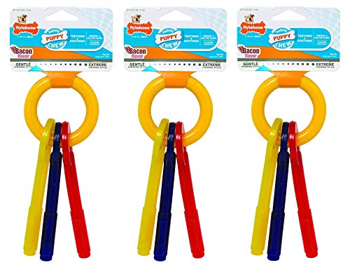 nylabone-puppy-teething-keys