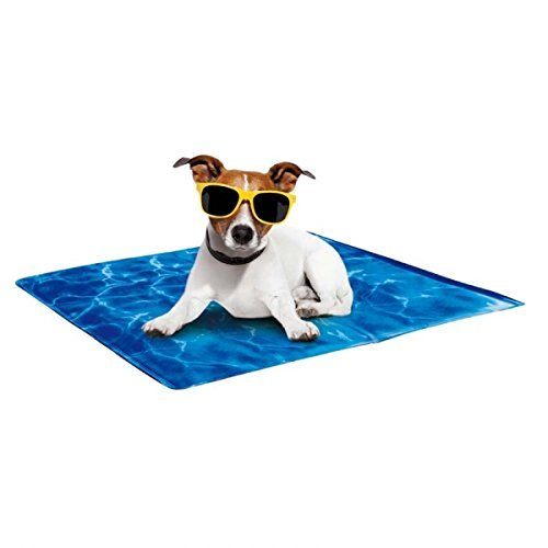 Afp Chill Out Cool Mat 35x24 All For Paws Chill Out Always Cool Khlmatte For Dogs L 90 X 60 Cm