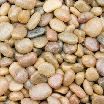 Estes Gravel Gems Nat Jmb 5lb Stoney River Jumbo Gems Natural For Freshwater Aquariums 5 Pound Bag