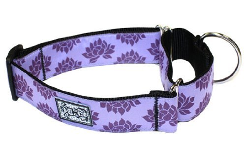 Rc Pet Products 1 1 2 Inch All Webbing Martingale Dog Collar Small Nirvana All Webbing Training Collar S Nirvana