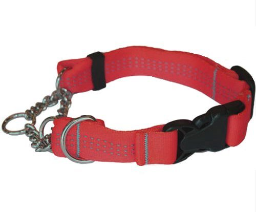 Canine Equipment Technika 1 Inch Quick Release Martingale Dog Collar Medium Red Quick Release Martingale Tec M Red