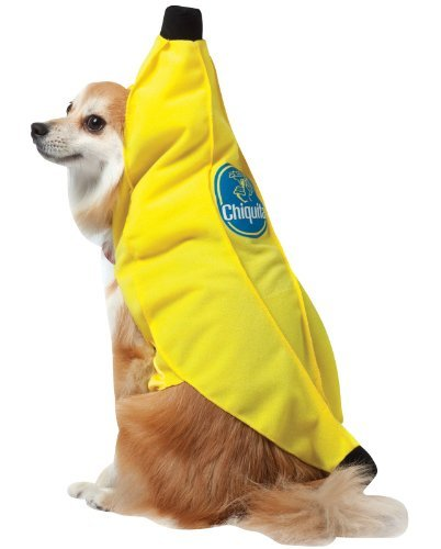 Rasta Imposta Banana Medium Rasta Imposta Chiquita Banana Dog Costume Medium