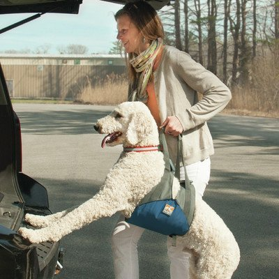 kurgo-up-and-about-dog-carrier
