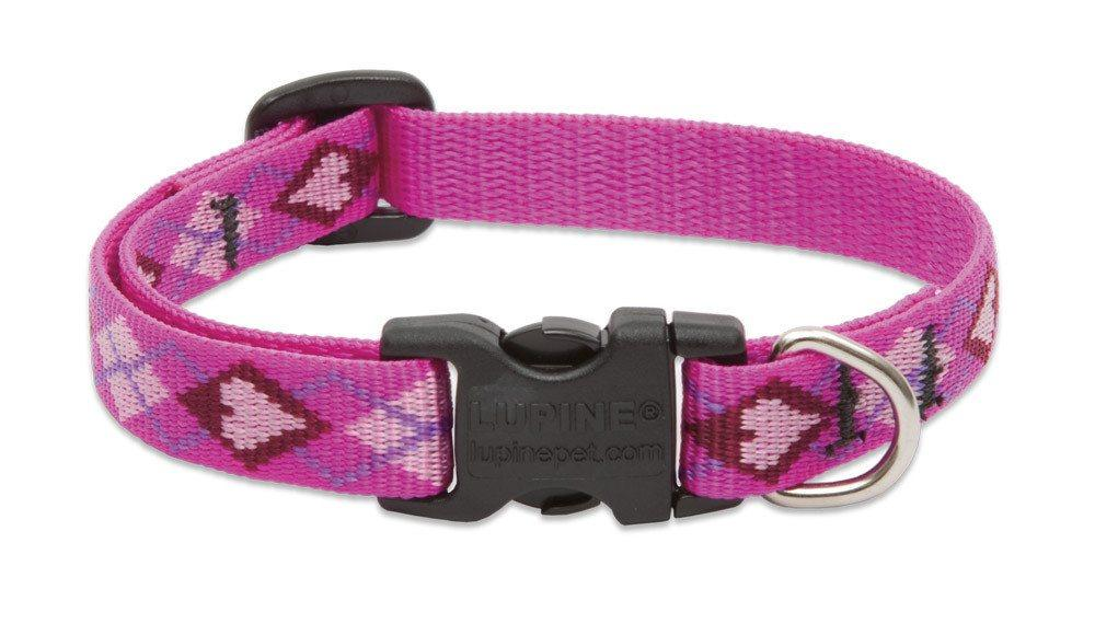 lupine-dog-collar-puppy-love-1-2-wide