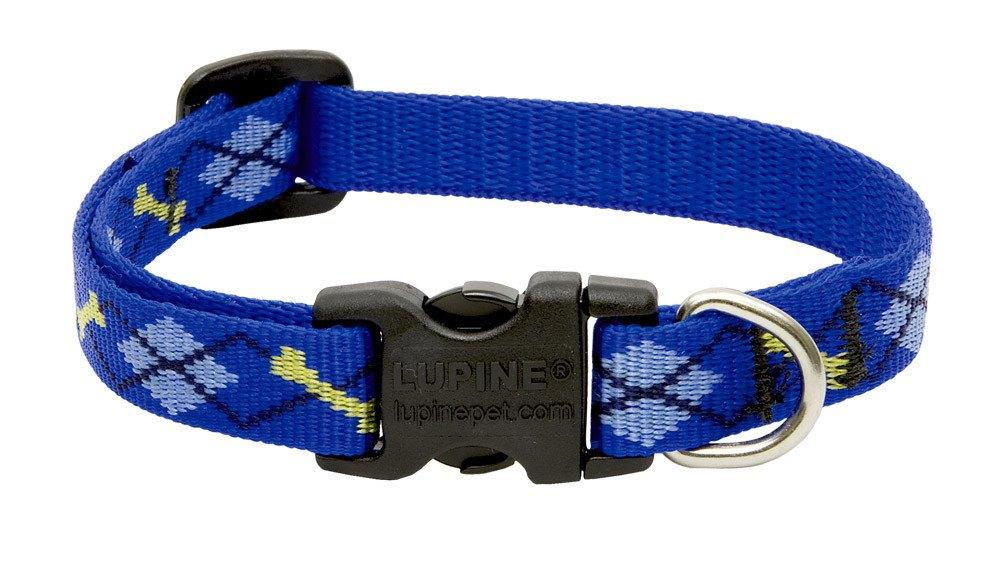 lupine-dog-collar-dapper-dog-1-2-wide