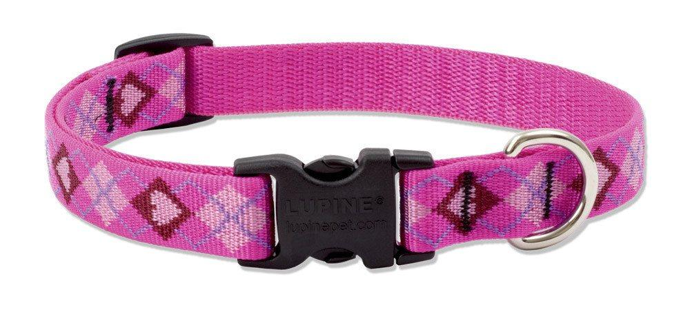 lupine-collar-puppy-love-3-4-wide