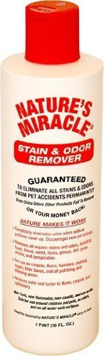 natures-miracle-stain-odor-remover-16-oz