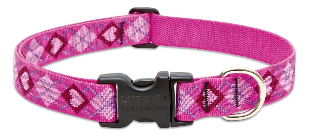 lupine-dog-collar-puppy-love-1-wide