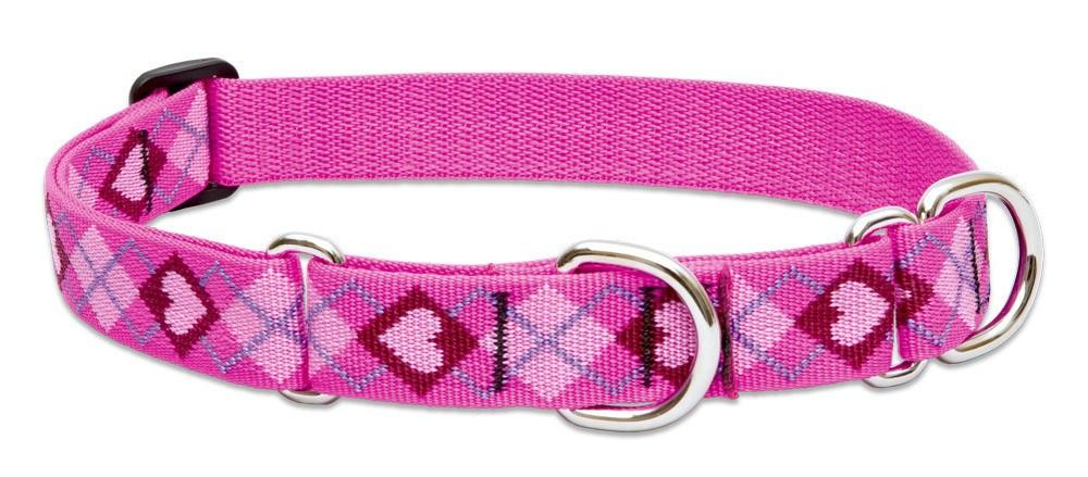lupine-combo-collar-puppy-love-1-wide