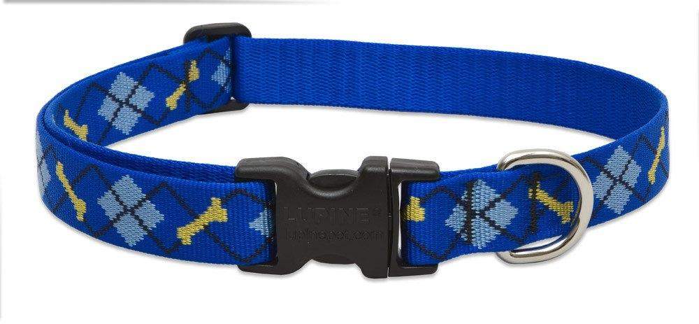 lupine-collar-dapper-dog-1-wide