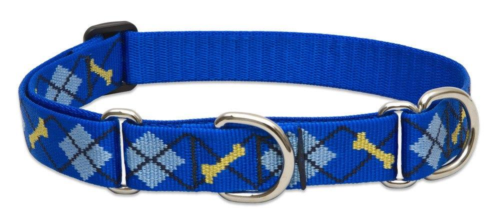 lupine-combo-collar-dapper-dog-1-wide