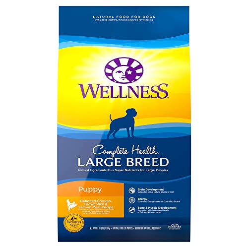 wellness-puppy-large-breed-30-lbs